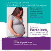 Efectos de la violencia de género sobre la salud de las mujeres